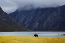 Hoće li ovo biti najveći nacionalni park na svijetu?