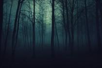 Zašto je strah boje mraka