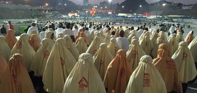 Saudijska Arabija – indirektni zaštitnik radikalizma
