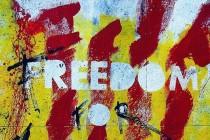 Katalonska demokratizacija Bosne