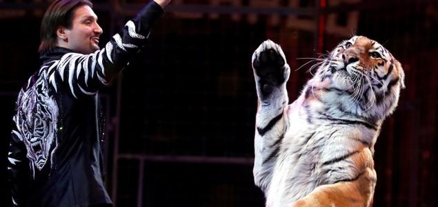Irska zabranjuje divlje životinje u cirkusima