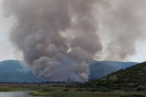 Milionske štete u Hutovom blatu: Prirodu treba ostaviti na miru da sama sebe sanira