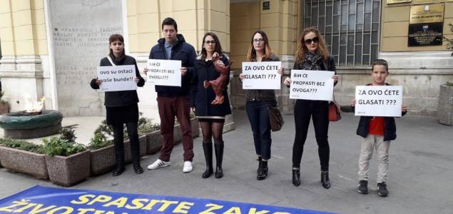 Dan D za životinje i zakon u BiH