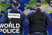 Interpol i političke igre