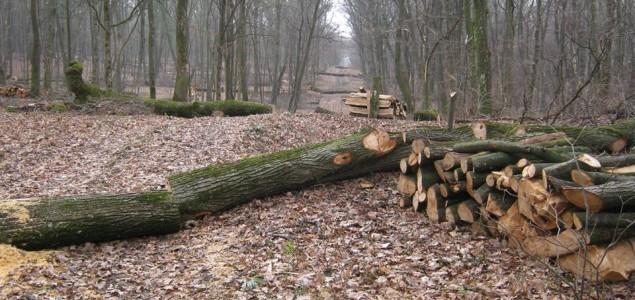 Ekološka katastrofa u Fruškoj gori