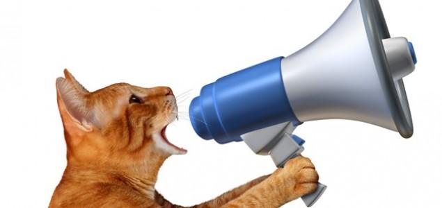 Znate li koliko različitih zvukova mogu proizvesti mačke?
