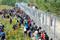 Izbjeglička kriza – ogledalo nesposobne vlasti
