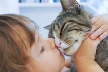 Zašto su kućni ljubimci dobri za vaše zdravlje