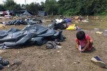 Katastrofalna situacija po živote izbjeglica i migranata u Bihaću i Velikoj Kladuši: Odgovorni ste svi! Ljudski životi su u pitanju!