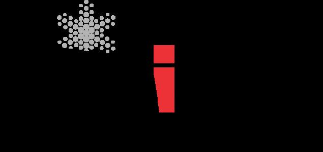 """Poziv za 35. Internacionalni festival Sarajevo """"Sarajevska zima 2019"""""""
