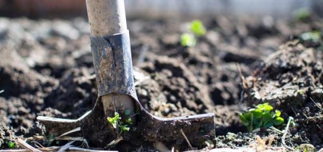 Kako je suša u Njemačkoj progutala milijarde eura?