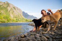 Psi su čudotvorci: Dokazano utječu na mentalno, emotivno i tjelesno zdravlje
