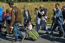 """Pismo planinara: """"Specijalci su mlatili migrante i pucali im iznad glava"""""""