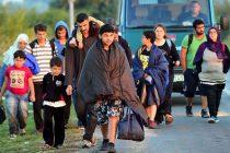 Border Violence: Hrvatska je za dva mjeseca ilegalno vratila 438 migranata u BiH