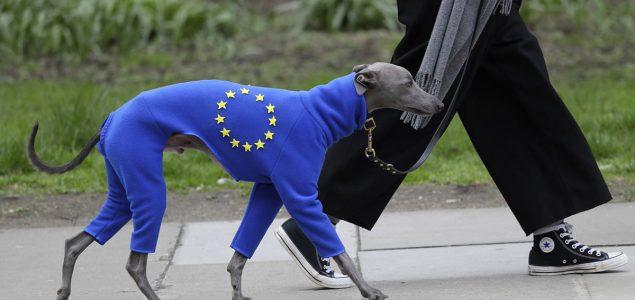 Brexit – uzrok ili simptom krize?