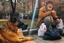 Sarajlija odabrao život na ulici sa psom, za njega su ministri bogati nesretnici