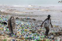 U želucu uginulog kita pronađeno 40 kilograma plastičnih vrećica