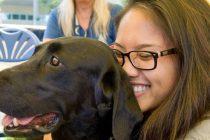 Kako terapeutski psi pomažu u učenju