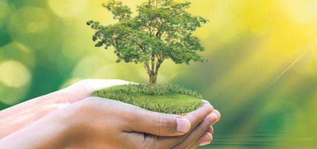 VELIKA AKCIJA ADRIJA MEDIJA GRUPE I DM DROGERIE MARKTA: Bez šuma nema života