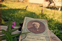 Božica Jelušić: O PAUNIMA I PURANIMA
