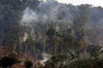 Amazonska prašuma i dalje gori, ali je svijet sve manje briga