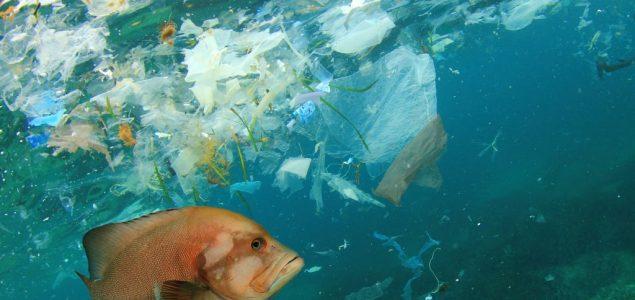Gimnazijalke iz Niša napravile robota za čišćenje plastike iz okeana