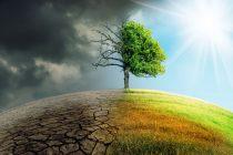 Danas je Svetski dan klimatskih promena: Da li ljudi i u kojoj meri utiču na promenu klime?