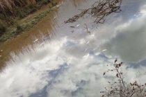 Pomor ribe u Neretvi zbog izlijevanja otpadnih voda s deponije Uborak