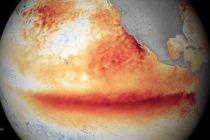 Klimatski fenomen: U 2020. opet prijete ekstremne vremenske prilike zbog El Ninja