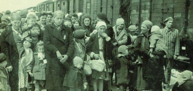 Odgajati protiv Auschwitza