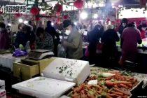 Kina: Shenzhen priprema zabranu jedenja mačaka i pasa