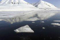 Morski led na Arktiku ove godine se dramatično smanjio