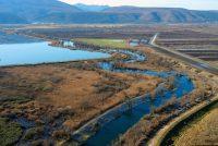 Mnoge životinjske populacije smanjene za 68 posto, u BiH problem prave male hidroelektrane