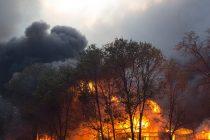 U požarima u Kaliformiji uništeno četiri miliona hektara
