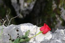 ZAHTIJEVAMO IZGRADNJU MEMORIJALA U SARAJEVU  ZA ŽRTVE UBIJENE NA KAZANIMA