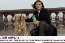 Pas ukrao mikrofon ruskoj novinarki dok se javljala uživo