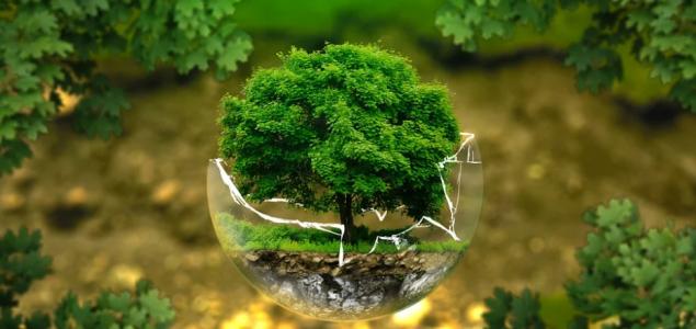 Zdrava planeta nije opcija, ona je nužnost
