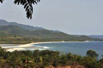 Sijera Leone prodaje prašumu za kinesku luku
