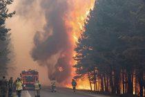 Požar u Sibiru – jedan od najgorih zagađivača vazduha u istoriji