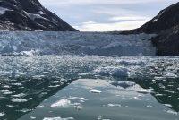 Klimatske promjene uzrokovale rekordno topljenje leda na Grenlandu