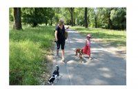 Prijatelji životinja upozoravaju vlasnike da dobro pripaze gdje ostavljaju ljubimce