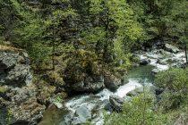 Ukinute građevinske dozvole za izgradnju dvije male hidroelektrane na rijeci Neretvici