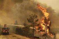 Broj mrtvih u požarima u Turskoj porastao na šest, poginula dva vatrogasca