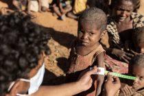 Madagaskar na rubu gladi izazvane klimatskim promjenama
