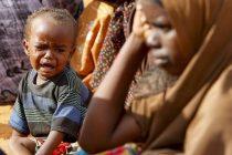 UN poziva na djelovanje svih protiv gladi i klimatskih promjena